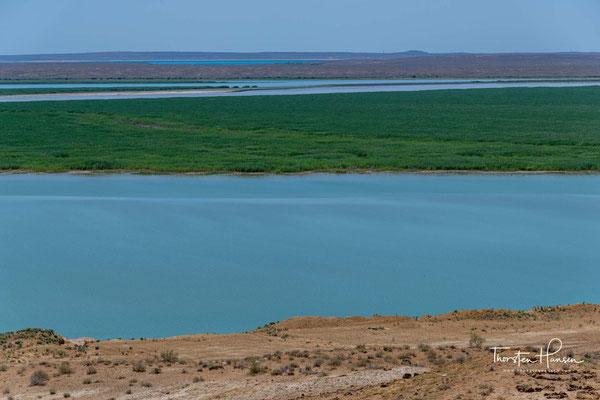 Der Amudarja oder Amudarya, in der Antike Oxus, ist ein Fluss im westlichen Zentralasien. Die Länge betrug ehemals 1415 km, gemessen von der Vereinigung der beiden Quellflüsse bis zur Mündung in den Aralsee.