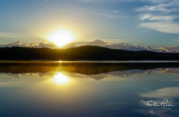 Es gibt eine Vielzahl von Lebensräumen auf Fraser Island. Dazu zählen Mangrovensümpfe, Buschland und Eukalyptuswälder.