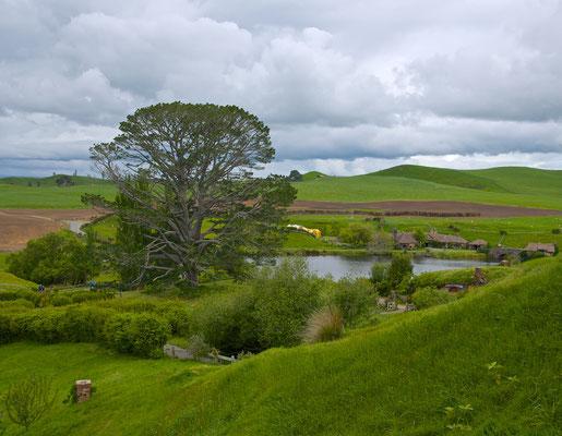 Nach geeigneten Verhandlungen mit den Eigentümern, begannen im März 1999 die Arbeiten zur Umwandlung eines Teils der Farm, in das Set für Hobbiton und andere Teile von J. R. R. Tolkiens Auenland.