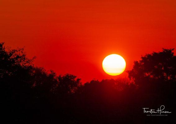 Der Südluangwa-Nationalpark (englisch: South Luangwa National Park) ist das bekannteste Tierschutzgebiet Sambias und der touristische Schwerpunkt des Landes.