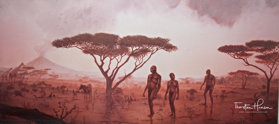 Olduvai Schlucht – Wiege der Menschheit