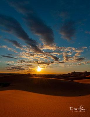 Die Dünen erreichen eine Höhe von 150 Meter. An einigen Stellen wachsen nach Regenfällen Dünengräser.