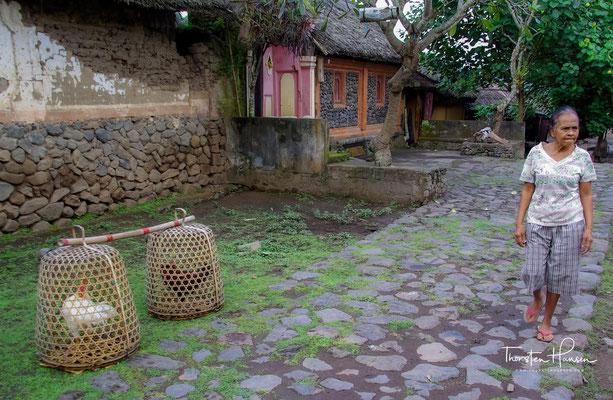 Im Bali-Aga-Dorf Tenganan ist alles ein bisschen anders, denn die Bali-Aga (Altbalinesen bzw. Nachfahren der Ureinwohner Balis) leben seit jeher abgeschottet nach ihren eigenen Gesetzen und Traditionen.