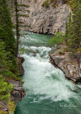 Der Maligne River entspringt nördlich des Replica Peak in den Kanadischen Rocky Mountains. Der Fluss fließt in nördlicher Richtung.