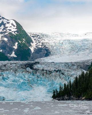 Der Prinz-William-Sund (englisch Prince William Sound) ist eine Bucht des Golfs von Alaska mit knapp 5000 km Küstenlinie, östlich der Kenai-Halbinsel.