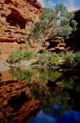 Garten Eden im Kings Canyon