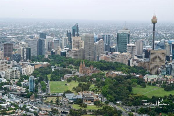 Blick auf den CBD in Sydney