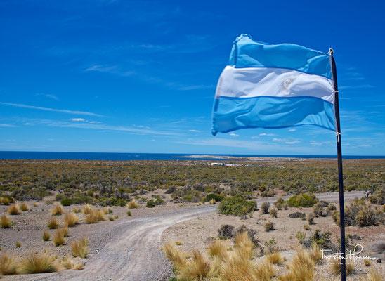 Punta Tombo ist ein Tierschutzreservat in der argentinischen Provinz Chubut an der Atlantikküste