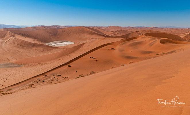Am nordwestlichen Ende ist das Deadvlei zum Endsenkensystem des Tsauchab, eines der großen blind endenden Trockenflüsse des Namib-Sandmeers, geöffnet.