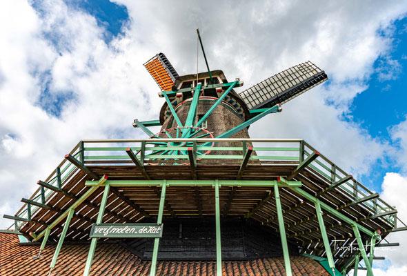 Die Mühle De Duinjager, ursprünglich eine Schnupftabakmühle von 1696 stand ursprünglich im Oostzijderveld.