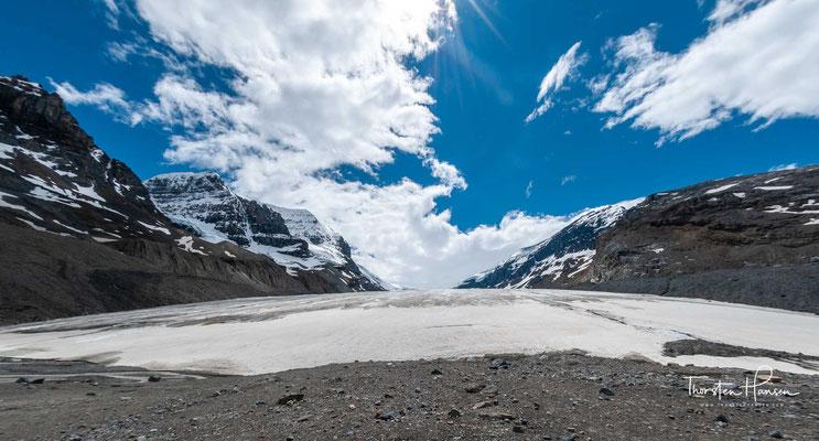 Seine Fläche beträgt 325 km², die Dicke 100 bis 365 m und die jährliche Schneefallmenge bis zu sieben Meter.  Das Eisfeld ist das Nährgebiet von acht großen Gletschern, darunter der Athabasca-, der Castleguard-, der Columbia und der  Domegletscher