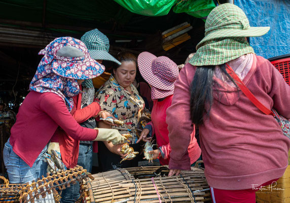 Auf dem Krebsmarkt in Kep gibt es angeblich die besten Meeresfrüchte Südostasiens.