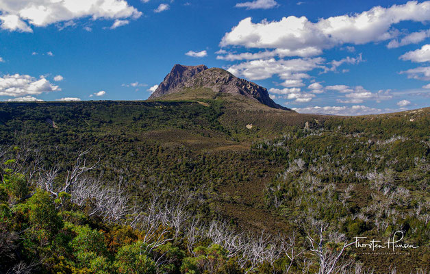 In der Cradle Mountain Region gibt es Moor- und Heidegebiete, die weite Teile des Parks bedecken.