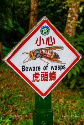 Schilder warnen vor giftigen Schlangen, Schwarzbären und Wespen.