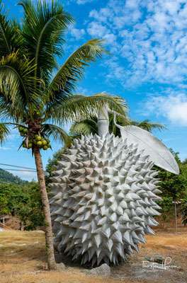 Weitere landwirtschaftliche Produkte sind vor allem die wegen ihres Geruchs berüchtigte Durian sowie Rambutanfrüchte (Thai: Ngo, เงาะ Aussprache: [ŋɔ́ʔ]).