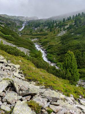 Entlang des Riepenbach führt der Weg ca. 600m bergauf zum gleichnamigen Wasserfall
