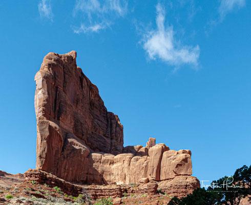 Die Ökosysteme des über 300 km² großen Parks reichen vom Flussufer des Colorado Rivers bis zum nackten Fels...