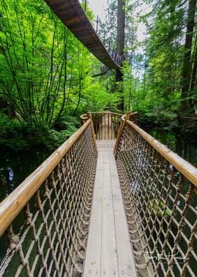 Eine der Top-Attraktionen in Vancouver ist die Capilano Suspension Bridge - die berühmteste Hängebrücke der Stadt.