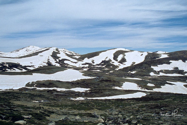 Mount Kosciuszko NP in den Snowy Mountains
