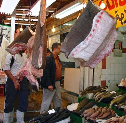 Haifischverkauf Damaskus