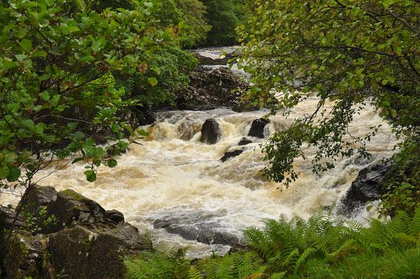Wanderung entlang des Western Highland Ways