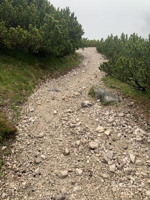 Der Wilde-Bande-Steig wurde 1929 von einer Bergsteigergruppe, die sich Wilde Bande nannte und eng mit den Salzbergknappen verbunden war, vom Lafatscher- zum Stempeljoch errichtet.