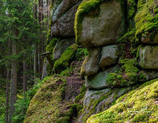 Bizarre, ungeschlachte Steinriesen versuchen, den Lauf der Waldnaab zu hemmen.