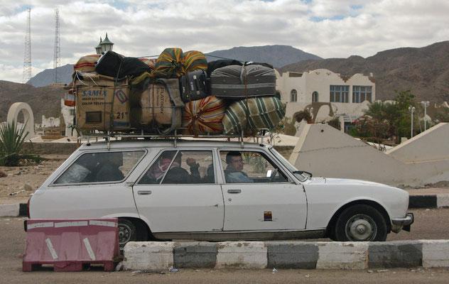 Von Kairo in die Welt