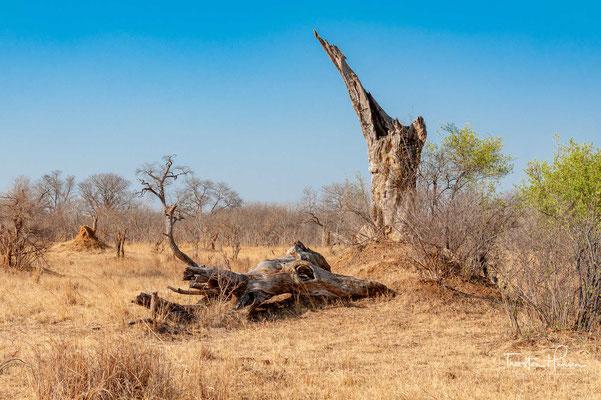 Der Park liegt im Westen des Landes in den Ausläufern der Kalahari an der Grenze zu Botswana 200 km nordwestlich der Stadt Bulawayo.