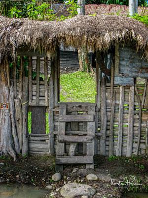 Weitere Stämme im Baliem-Tal sind die Lani (im Westen) und die Yali im Süd-Osten.