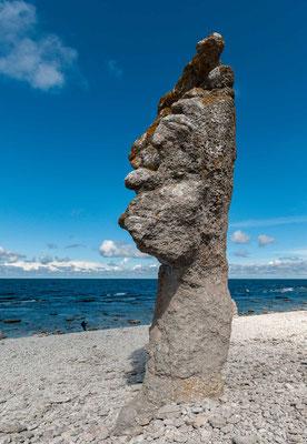 Raukar sind bis über 10 Meter hohe Kalksteinsäulen, die auf Gotland, aber auch auf Fårö, Lilla Karlsö und auf der benachbarten Insel Öland zu finden sind
