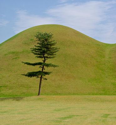 Gyeong-Ju Hwangnamri Gobungun Tomb Park