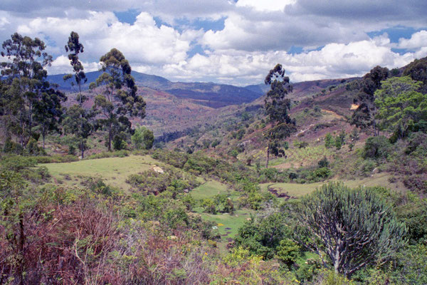 Wanderung durch die Usambara Berge