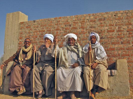 Birqash Camel Market