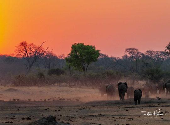 Der Park, in dem es eine große Artenvielfalt gibt, gehört zu den bedeutendsten Naturschutzgebieten des Landes. Er ist Teil der Kavango-Zambezi Transfrontier Conservation Area.