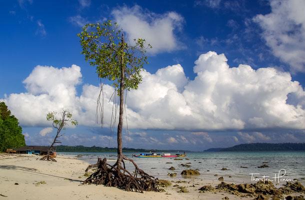 Havelock Island bietet einige der besten und schönsten Strände in ganz Asien.