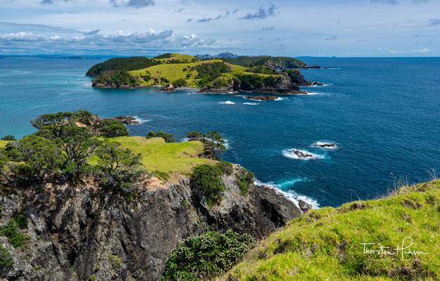 Auf der Insel gibt es eine Kolonie von Kormoranen. An der Küste wachsen zahlreiche Pohutukawa-Bäume.