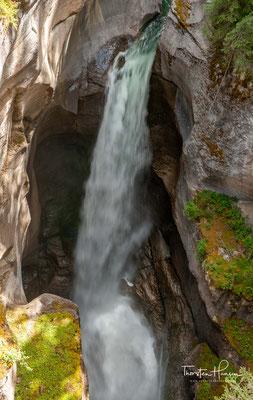 Er fließt weiter in nördlicher Richtung. Er durchfließt den Medicine Lake, den Maligne Canyon und mündet schließlich 8 km nordöstlich von Jasper in den Athabasca River.