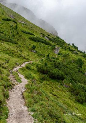 Nach einem eher gemächlichen Beginn der Wanderung, steigt der Weg auf einmal ca. 300m an....