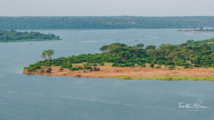 Der Queen-Elizabeth-Nationalpark liegt im Westen Ugandas und wurde im Jahre 1952 gegründet