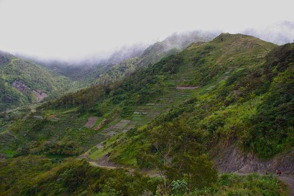 Blauem Valley