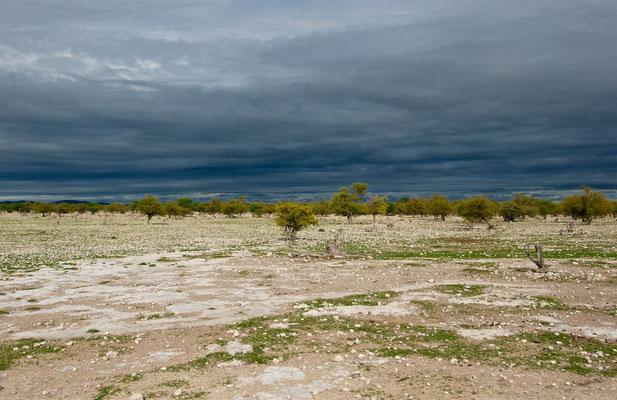 Wetterimpressionen im Etoscha NP