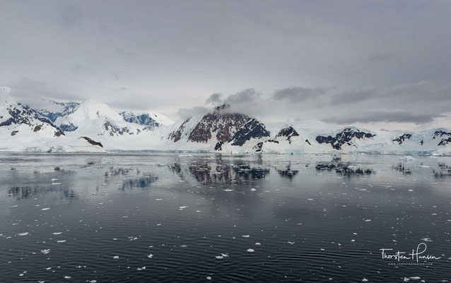 Der antarktische Kontinent ist von einer riesigen Packeiszone umgeben, in der sich wegen des sauerstoffreichen Wassers eines der üppigsten Ökosysteme der Welt entwickelt hat.