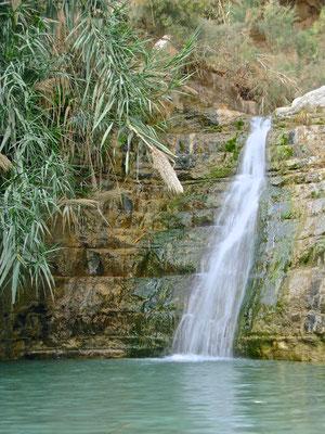 Das Wadi David im En Gedi Naturreservat zählt mit seinen zahlreichen Wasserfällen zu den schönsten in ganz Israel.