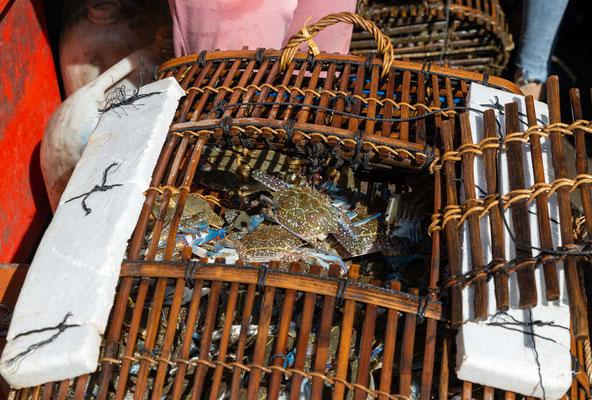 Die Verkäuferinnen in ihren bunt gemusterten, pyjamaähnlichen Anzügen und den karierten Mützen mit den breiten Krempen fischen frische Ware aus den großen Körben