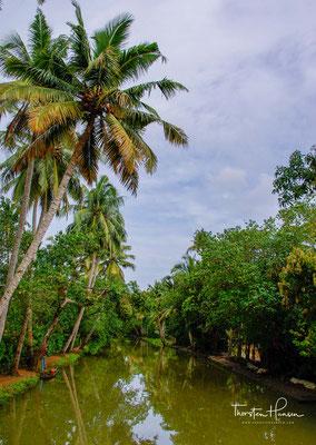 In Kollam und Alappuzha kann man auch zu Hausbooten umgebaute Kettuvallam für längere Zeit mieten.