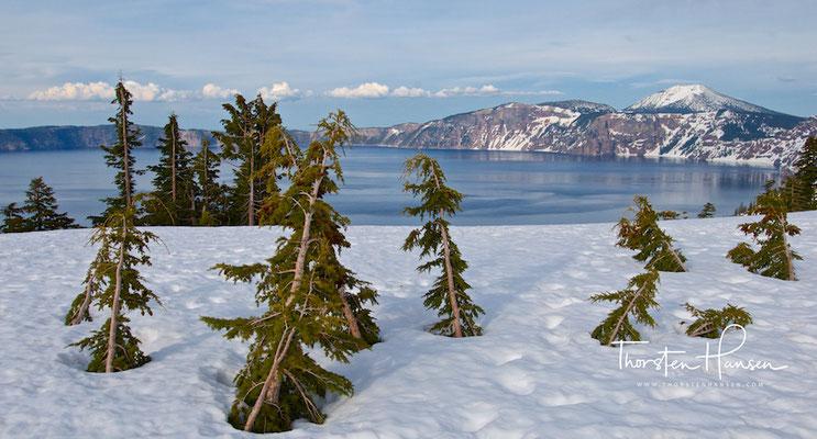 Crater Lake Oregon im Winter