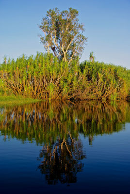 Yello River Kakadu NP