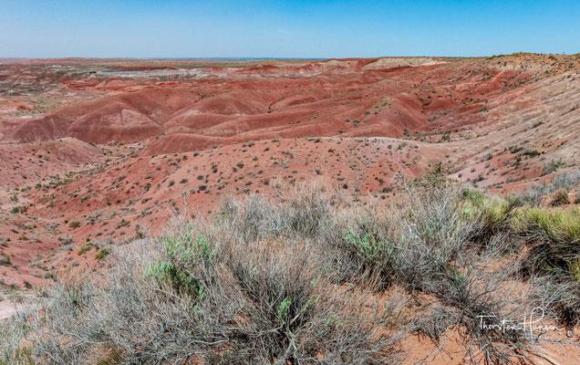 Er bewahrt geologisch bemerkenswertes Sedimentgestein der Obertrias mit einer Vielzahl an Fossilien.