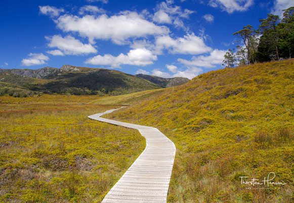 Der Track erstreckt sich über eine Länge von 65 km durch die Tasmanische Wildnis vom Cradle Mountain zum Lake St. Clair.